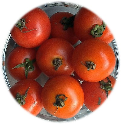 Bunch of tomatoes placed in a glass bowl