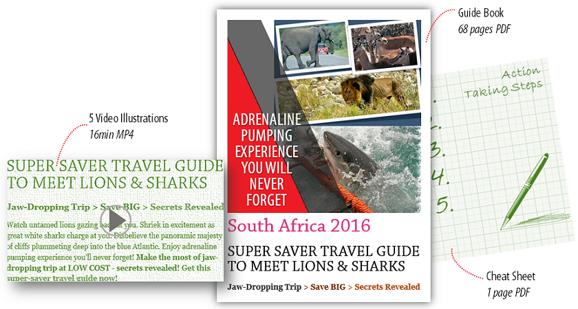 South Africa 2016 - Super Saver Travel Guide
