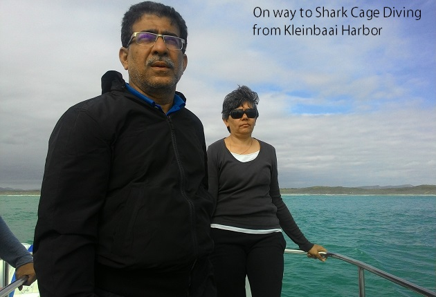 On board speed boat for shark cage diving off Kleinbaai harbor